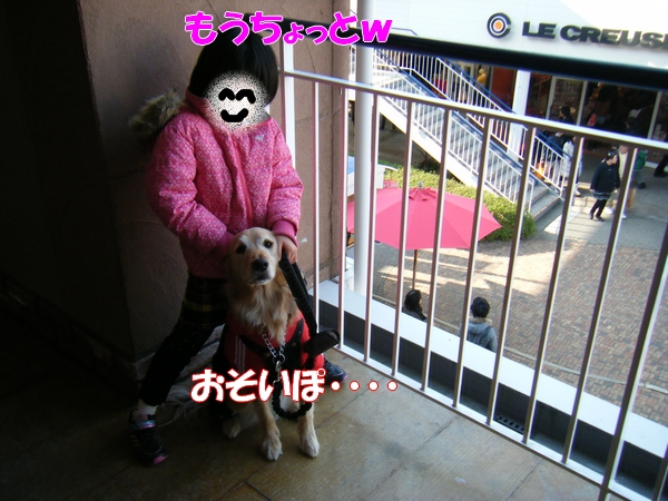 DSCF5074_20120113233339.jpg