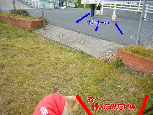 DSCF5177_20120125235315.jpg