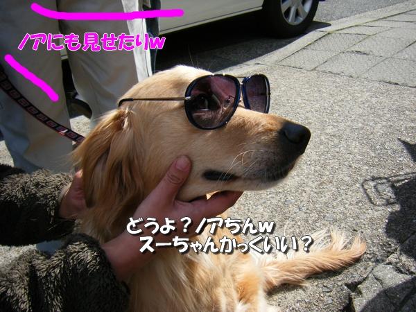 DSCF9020_20110407235043.jpg
