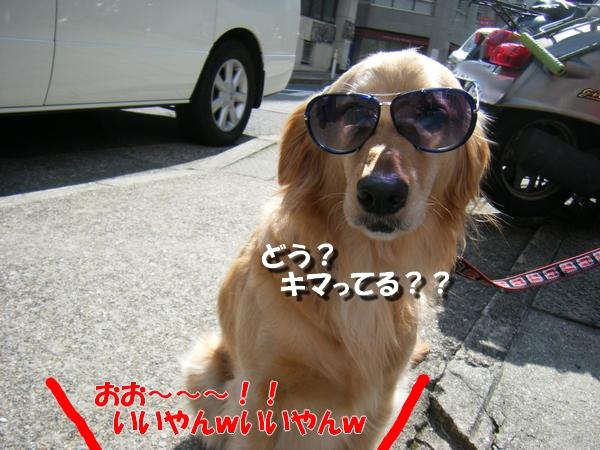 DSCF9022_20110407235033.jpg