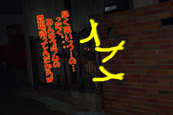 IMGP0017_20111201005659.jpg