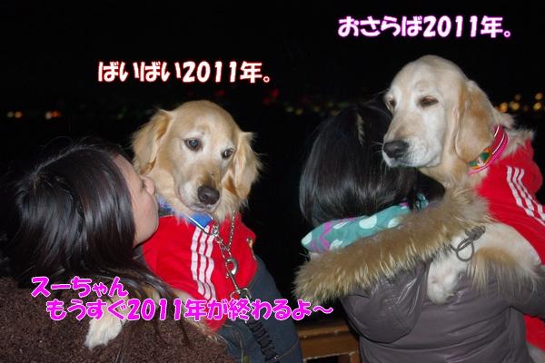 IMGP9371_20120107002712.jpg