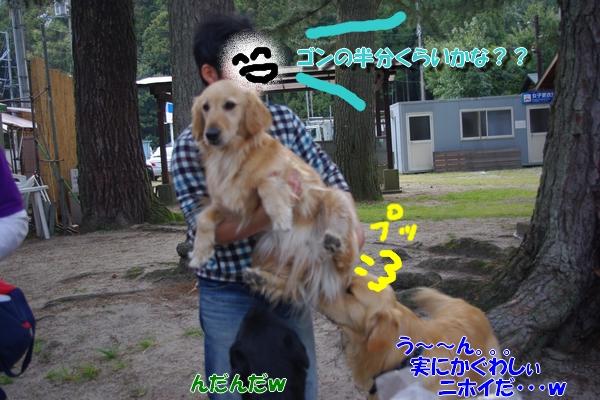 IMGP9566.jpg