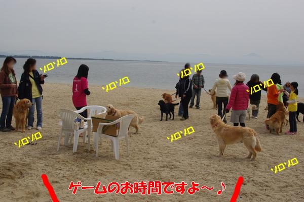 IMGP9751_20110508000855.jpg