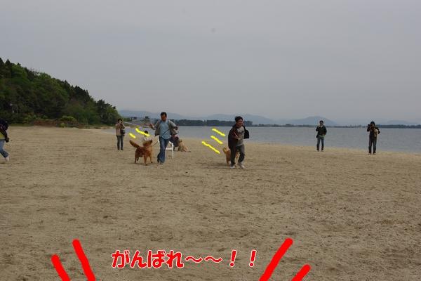IMGP9757_20110505234553.jpg