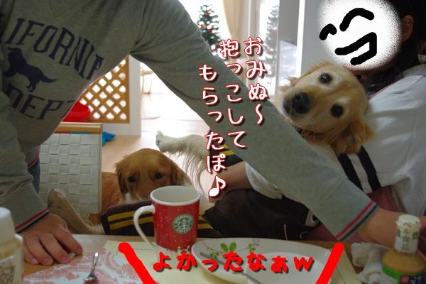 IMGP9764_20111126001053.jpg