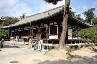 yakushi002.jpg