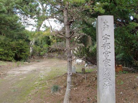 PA200413-1.jpg