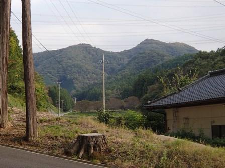 PA200417-1.jpg