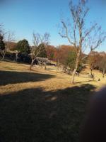 壬生公園3