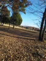 壬生公園2