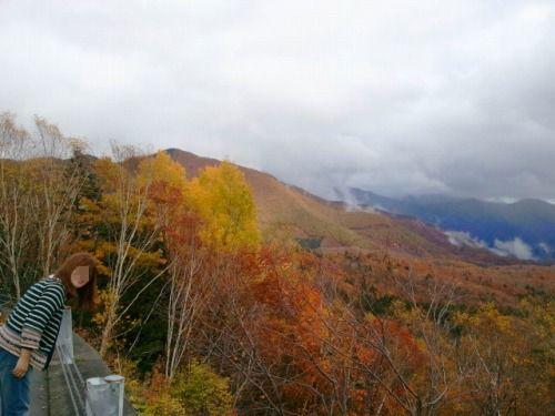2011-10-22 11.09.14a