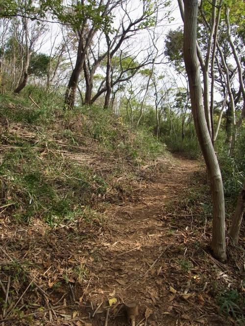 RIMG4664.jpg