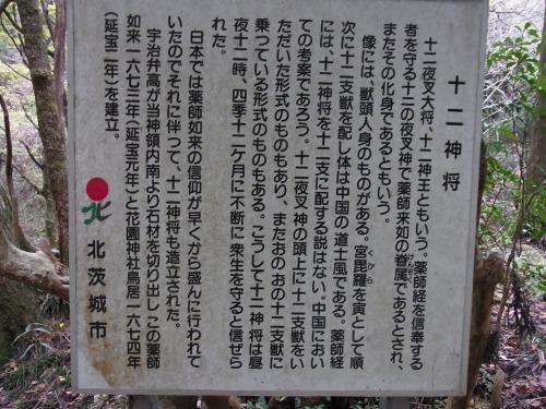 RIMG4842.jpg
