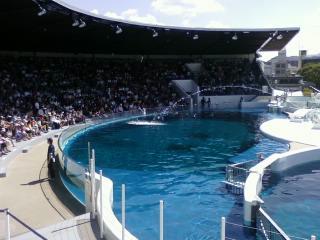 きょうと水族館1