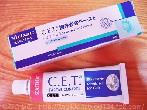 CET歯みがきペースト