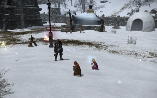 FF14_201312_079.png