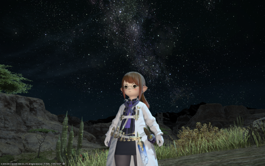 FF14_201312_088.png
