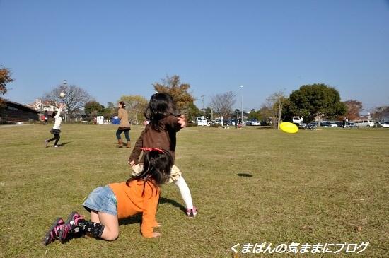 Nikon_20131208_140554.jpg