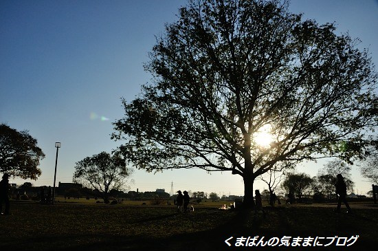 Nikon_20131208_160431.jpg
