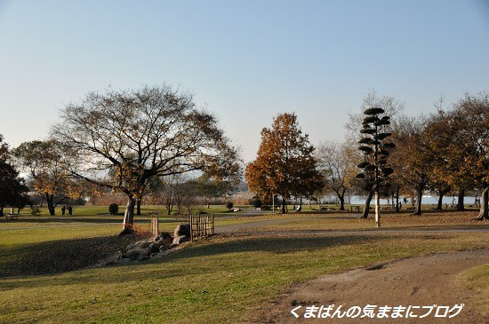 Nikon_20131208_160939.jpg
