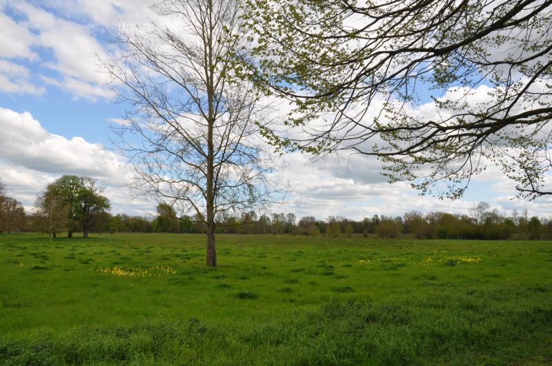 2012london_5_0699_120504_002047.jpg