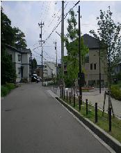 金浦用水沿い田上町はまだ・・・街灯を暗くしてあります。