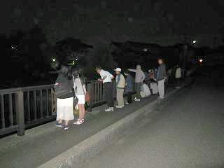 最盛期が過ぎた蛍川(角間川)・中瀬橋のホタル