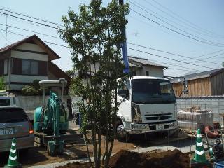 DSCF5465.jpg
