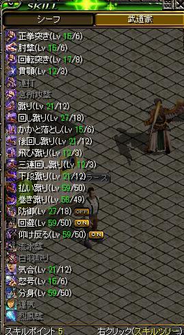 568Lv武道スキル