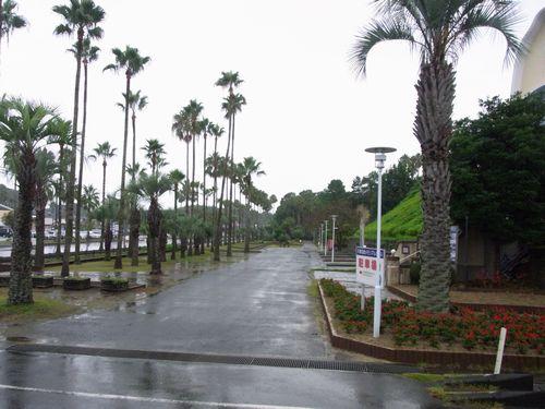 天草四郎公園1