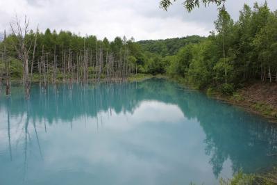 青い池 (4)