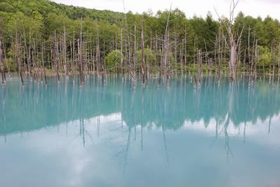 青い池 (3)