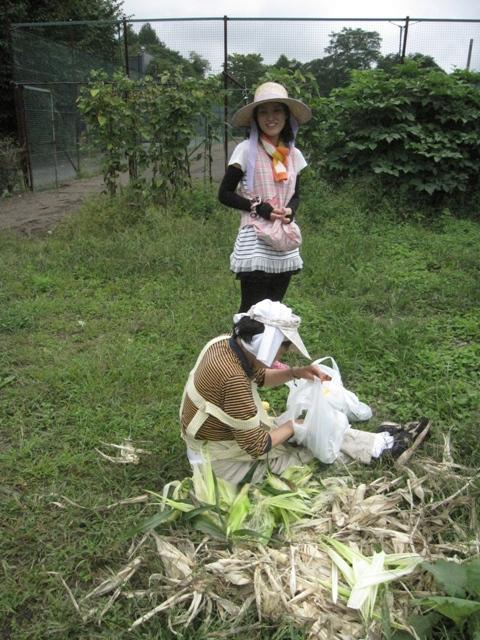 モコ様収穫祭11