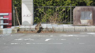 2011_02_23_07.jpg
