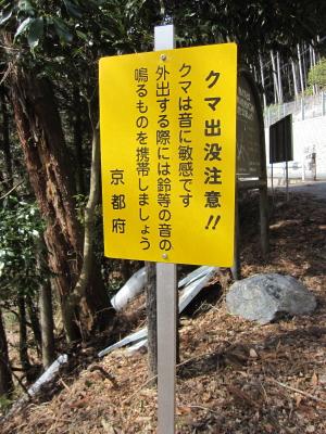2011_02_23_09.jpg