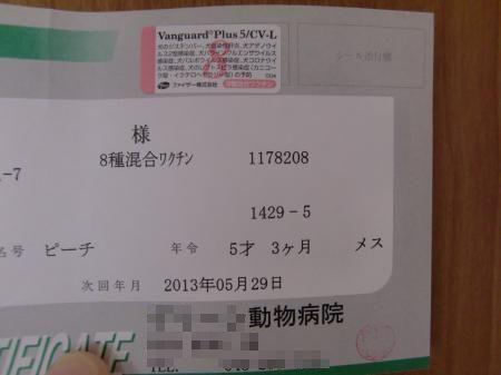 CIMG1812_convert_20120529145050.jpg