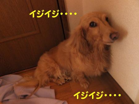 DSCF2599_convert_20120725225706_20120726114728.jpg
