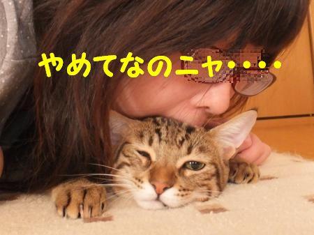 DSCF3680_convert_20120908153233.jpg