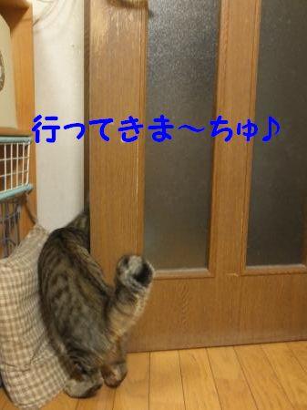 DSCF3861_convert_20120918113536.jpg