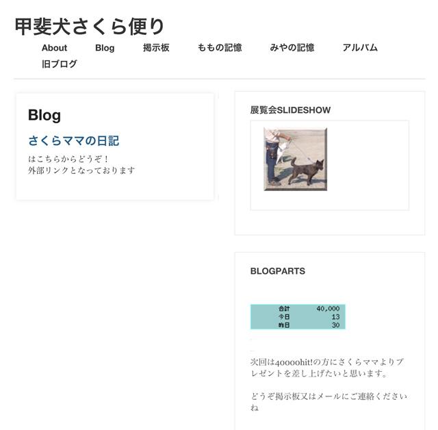 40000sakura.jpg