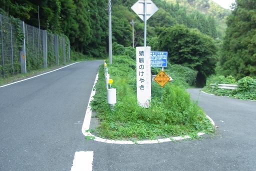 県道22号からの林道