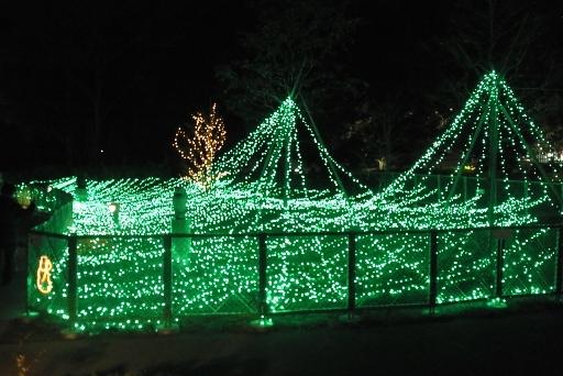 中央公園入口のクリスマスイルミネーション