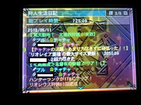 DSC_04156.jpg