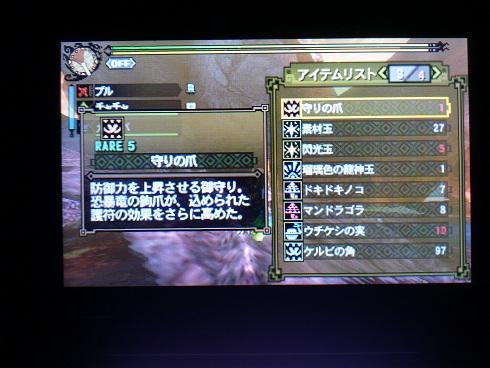 DSC_04211.jpg