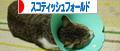 ばなー IMG_4217