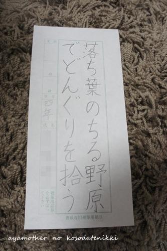 DSC06846-1.jpg