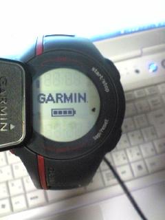 GARMIN110.jpg