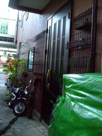 観葉植物(リプサリス・ホヤ・ランなどなど)ビニールハウス&室内にしまいました~♪殺風景な玄関際~2012.12.09