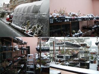 2012うるう(閏)年~2012.02.29~4年に1度の29日東京は雪景色となりました!